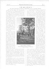 Allgemeine Automobil-Zeitung 19150110 Seite: 20