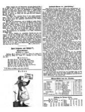 Allgemeine Spiel-Zeitung 18671103 Seite: 5