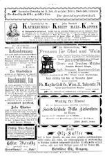 Bludenzer Anzeiger 18930624 Seite: 8