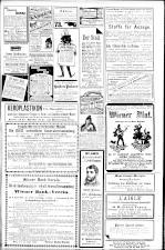 Die Bombe 18930319 Seite: 7