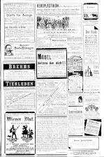 Die Bombe 18930416 Seite: 7
