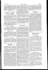 Bukowinaer Rundschau 19060706 Seite: 3