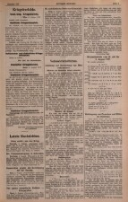 Cetinjer Zeitung 19170809 Seite: 3