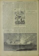 Das interessante Blatt 18870630 Seite: 2