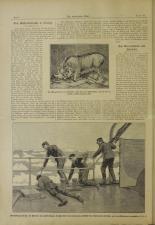 Das interessante Blatt 18930720 Seite: 2