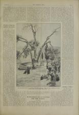 Das interessante Blatt 18950620 Seite: 3