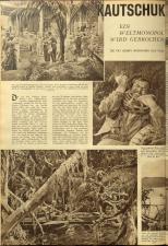 Das interessante Blatt 19381117 Seite: 10