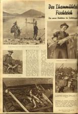 Das interessante Blatt 19381117 Seite: 22