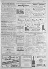 Dillinger's Reisezeitung 18931010 Seite: 11
