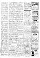 L'Eco di Pola 18930617 Seite: 3