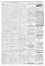 L'Eco di Pola 18930729 Seite: 3