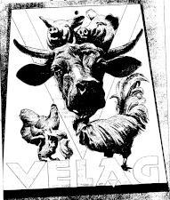 Feldkircher Anzeiger 19381119 Seite: 9