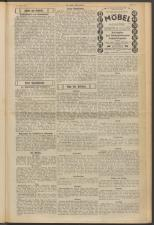 Der freie Burgenländer 19250510 Seite: 3