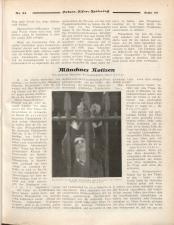 Österreichische Film-Zeitung 19270813 Seite: 49