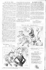 Der Floh 18930716 Seite: 2