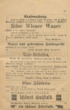 Gemeindeblatt Lustenau 18930101 Seite: 11
