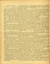 Gottscheer Bote 19050104 Seite: 12