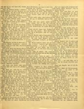 Gottscheer Bote 19050104 Seite: 13