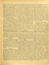 Gottscheer Bote 19050104 Seite: 19