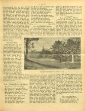 Gottscheer Bote 19070204 Seite: 19