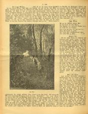 Gottscheer Bote 19070504 Seite: 16