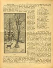 Gottscheer Bote 19071219 Seite: 16