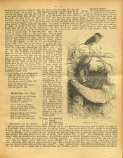 Gottscheer Bote 19080419 Seite: 17