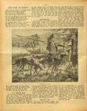 Gottscheer Bote 19080519 Seite: 16