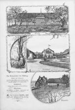 Der Humorist 18900820 Seite: 8