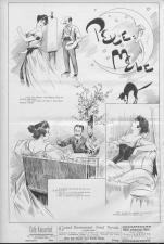 Der Humorist 18951110 Seite: 8