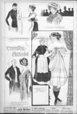 Der Humorist 19031101 Seite: 8