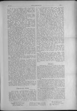 Der Humorist 19060911 Seite: 7