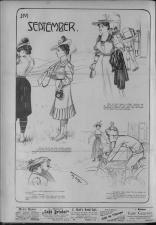 Der Humorist 19060911 Seite: 8