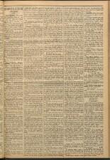Il giovine Pensiero 18930726 Seite: 3