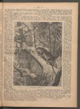 Ischler Wochenblatt 1886bl01 Seite: 104