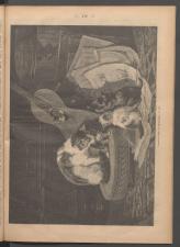 Ischler Wochenblatt 1886bl01 Seite: 116