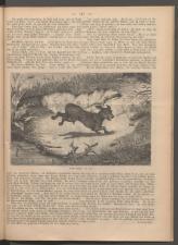 Ischler Wochenblatt 1886bl01 Seite: 143