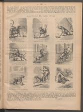 Ischler Wochenblatt 1886bl01 Seite: 189