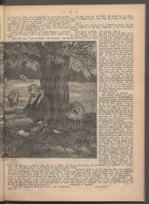 Ischler Wochenblatt 1886bl01 Seite: 65