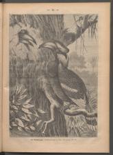 Ischler Wochenblatt 1886bl01 Seite: 92