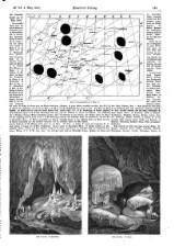 Illustrirte Zeitung 18580306 Seite: 13