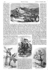 Illustrirte Zeitung 18580918 Seite: 4
