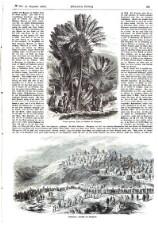 Illustrirte Zeitung 18581225 Seite: 5