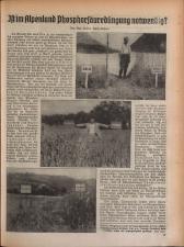 Wochenblatt der Bauernschaft für Salzburg 19381119 Seite: 17