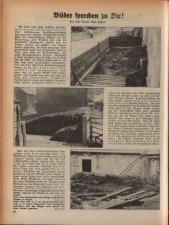 Wochenblatt der Bauernschaft für Salzburg 19381203 Seite: 12