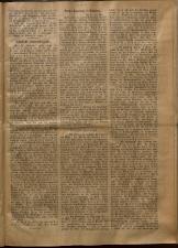 Leitmeritzer Zeitung 19090519 Seite: 3