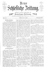 Neue Schlesische Zeitung