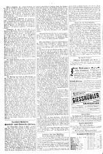 Neue Warte am Inn 18900621 Seite: 6
