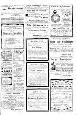 Neue Warte am Inn 18930304 Seite: 7