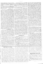 Neue Warte am Inn 18930408 Seite: 5